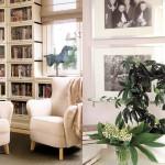 kuvassa kirjahylly ja kasvi